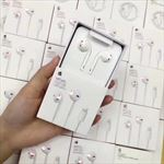 Palessi iPhone X Earphones -Lightning connection